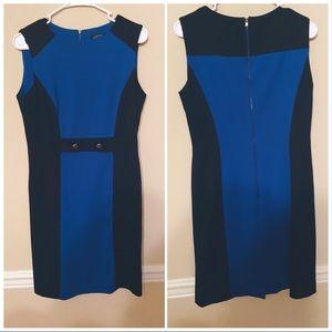Tahari by asl sleeveless color block dress